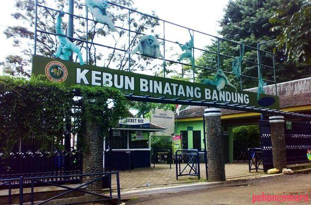Alamat Kebun Binatang Taman Sari