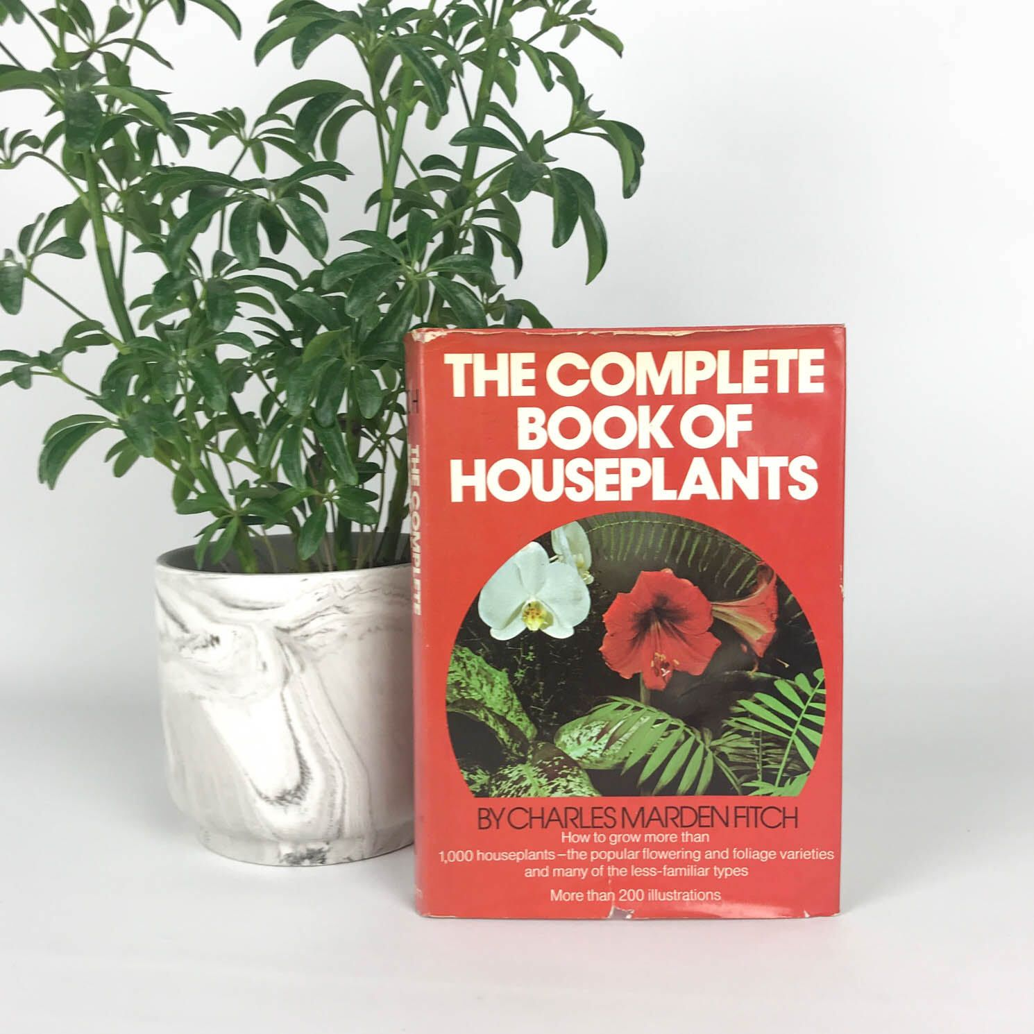 1970s Vintage Houseplant Book Vintage Gardening Book Coffee Table Book Plant Care Book 70s Books Old Books B Plant Book Gardening Books Vintage Gardening