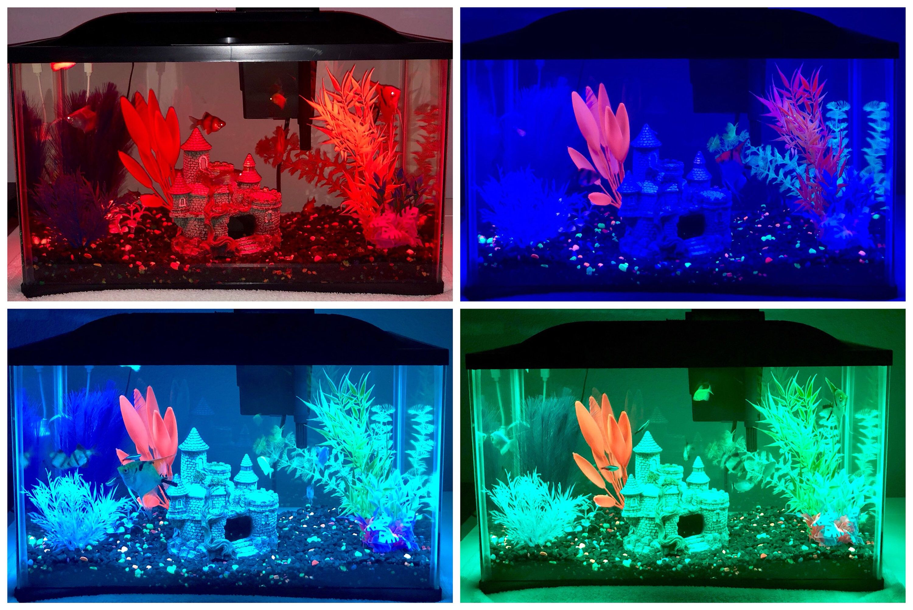 Remote Controlled Fish Tank Led Lights, With 20 Color And