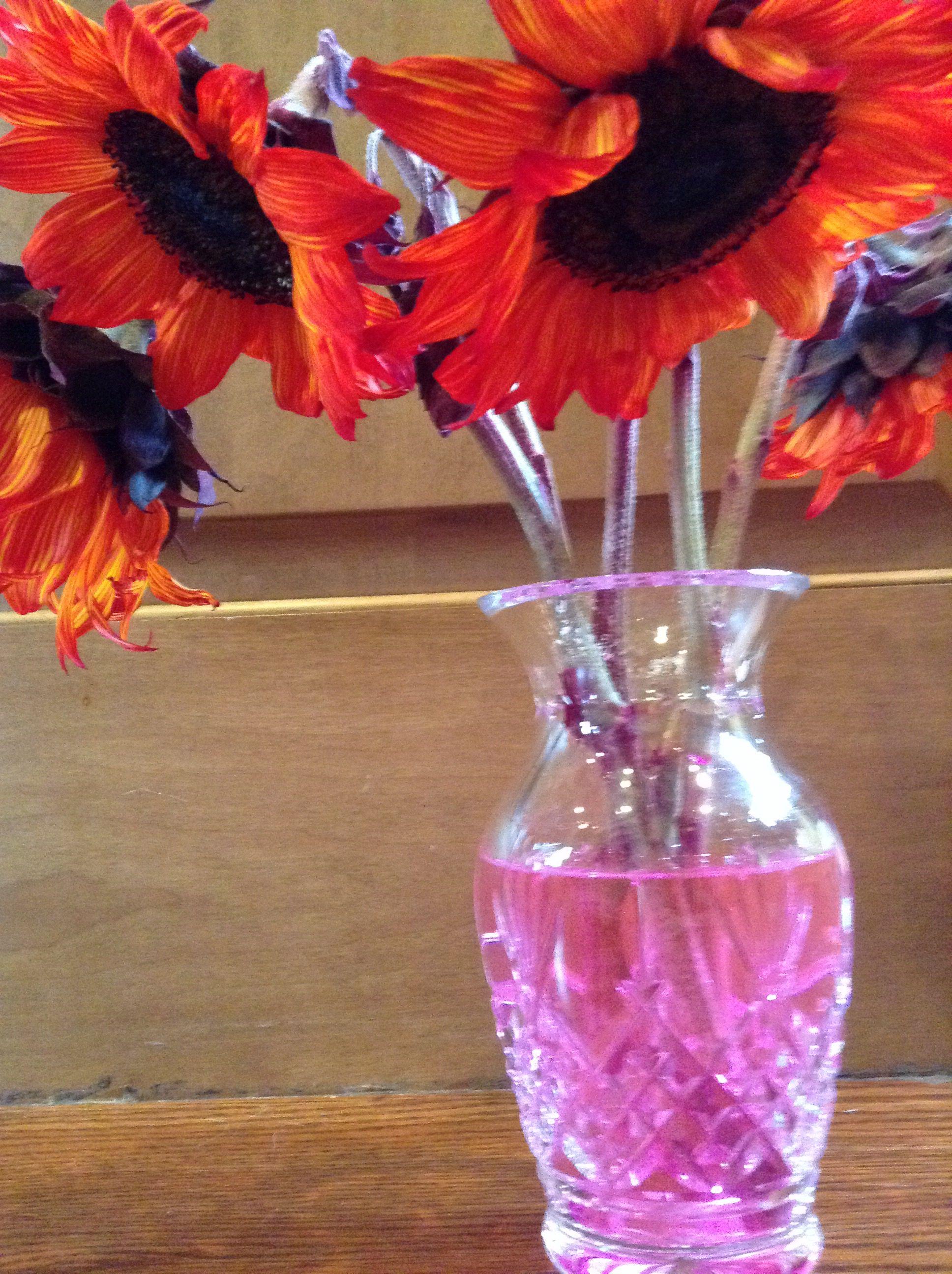 Fancy Food Coloring In Flower Water Pattern - Coloring Paper ...