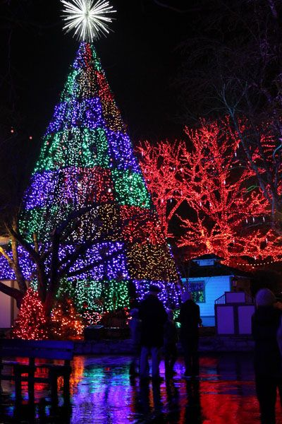 Christmas is Coming ~ Branson, Missouri, http://www.sidetrackedsarah.com/2012/12/enjoying-christmas-at-silver-dollar-city/