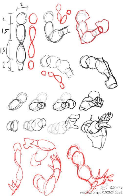 Pin by joe jaramillo on drawings 2018 | Pinterest | Anatomy ...