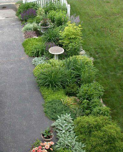 Garden Forum: Driveway Border Through The Seasons