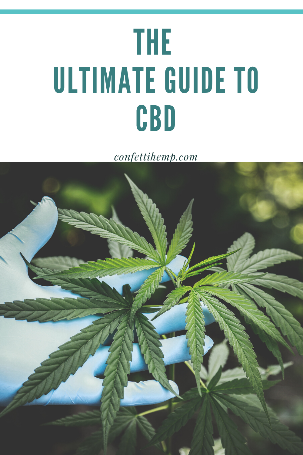 Pin On Best Cbd Oil Infused Products
