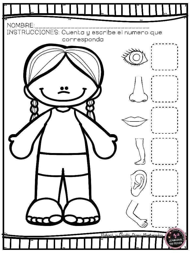 Actividades para trabajar el cuerpo humano en E. Infantil