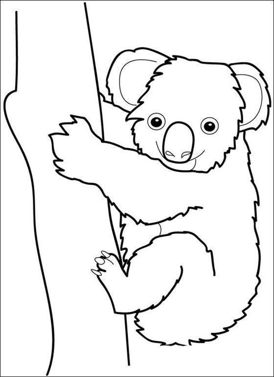 Koala Jpg 560 771 Dibujos Koala Dibujos De Animales