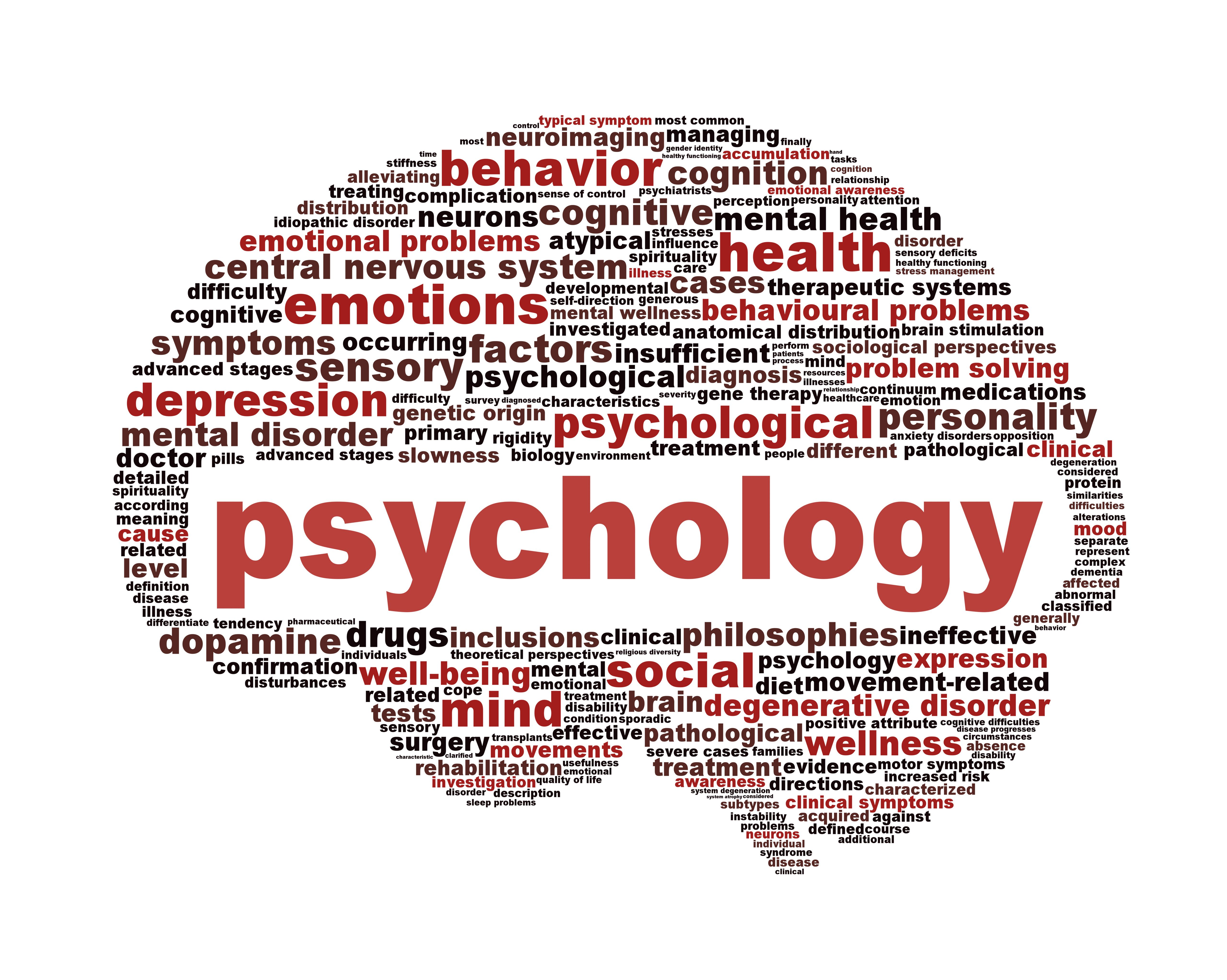bachelor of science in psychology military resilience online  bachelor of science in psychology military resilience