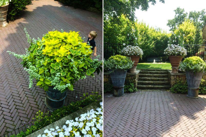Escalones casa de campo escalones jardiner a y casas for Jardineria al aire libre casa pendiente