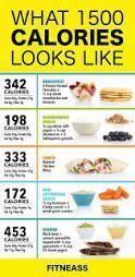 1400Calorie Image of 1500 calorie meal   1400Calorie Bild des 1500 Kalorien Mahlzeitplans
