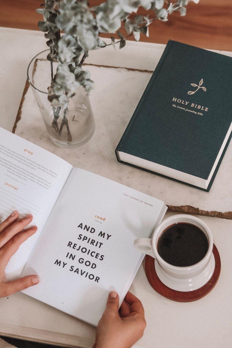 46+ Catholic advent devotional books information