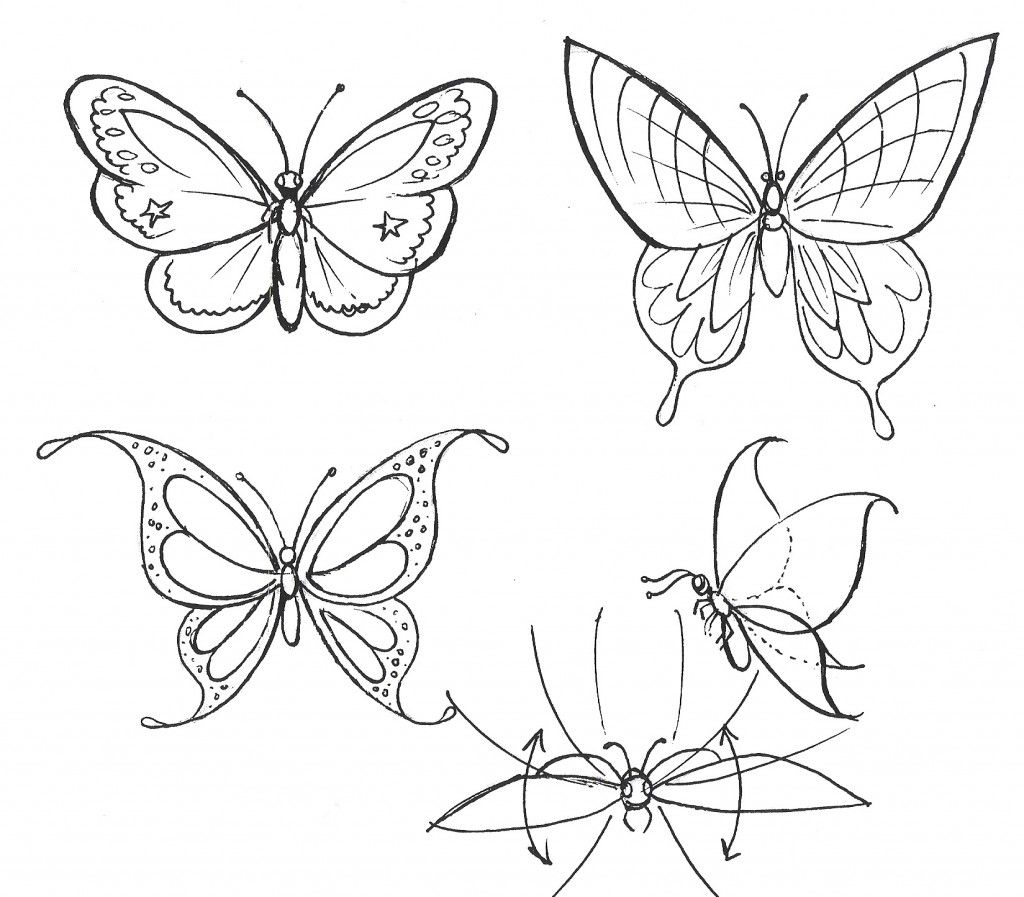 How to draw a flower step by step about how to draw a butterfly in simple and step by step way well we