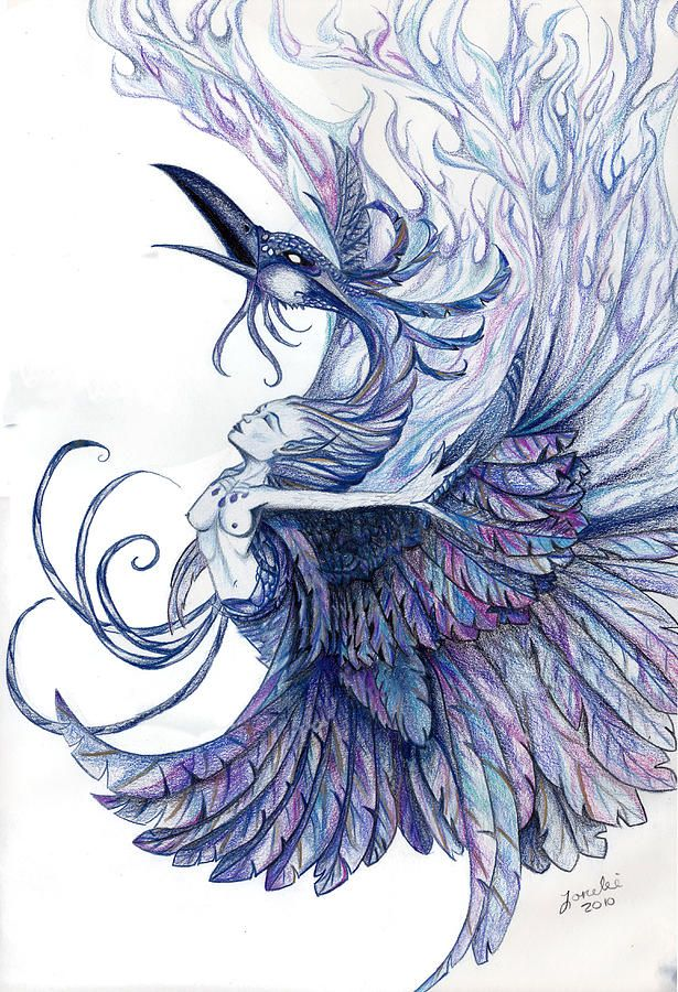 Blue Phoenix By Lorelei Marie Phoenix Bird Art Phoenix Drawing Phoenix Tattoo