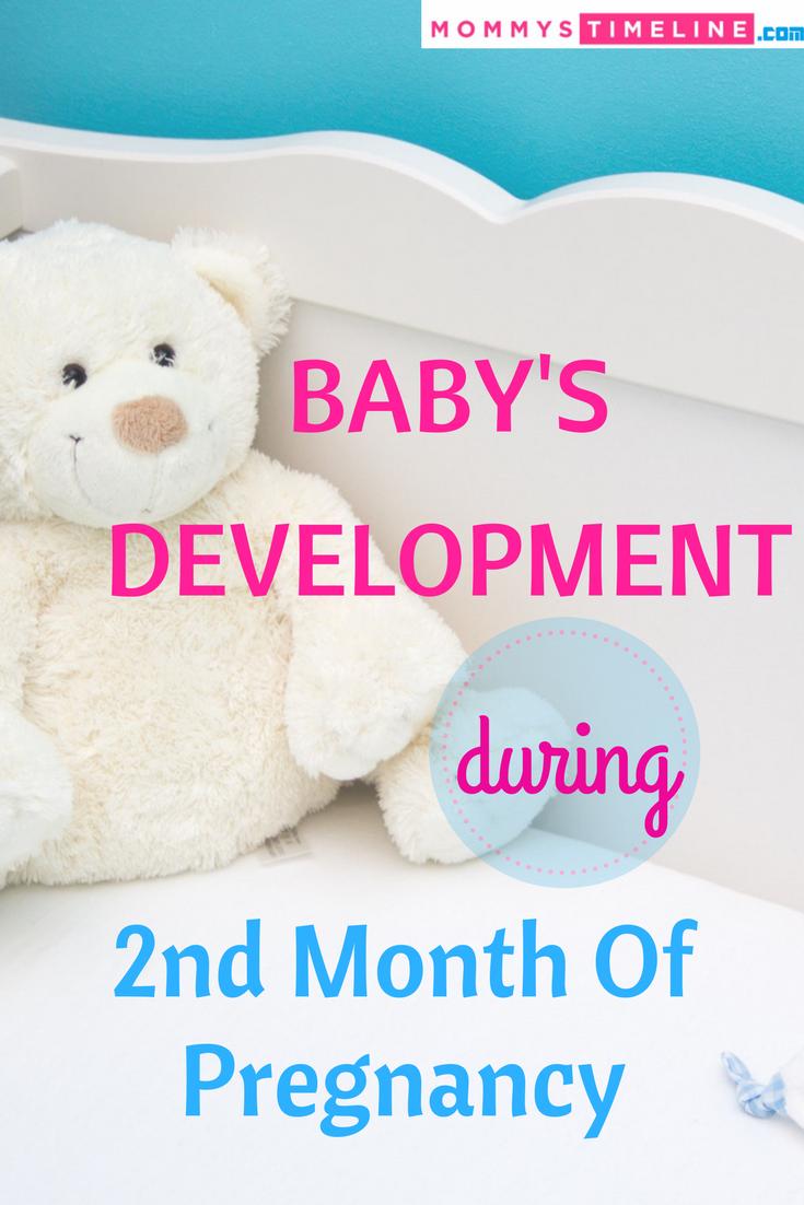 Second Month Of Pregnancy - Symptoms & Diet | Pregnancy | Pregnancy