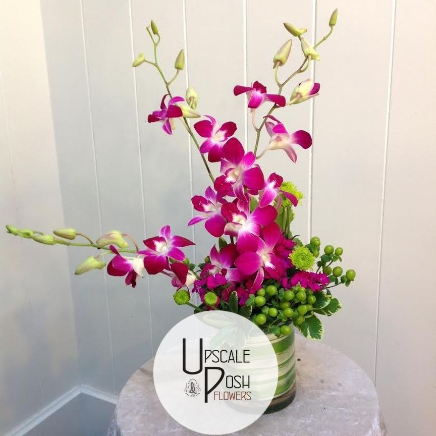 Daisies Can Tell Her That You Love Her But To Prove It You Need Orchids We Know Exactly What You Like In 2020 Flower Studio Online Florist Dubai Wedding