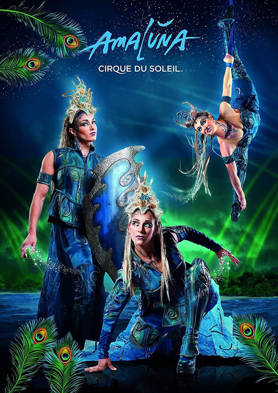 Cirque De Soleil Presents Amaluna 1000 Piece Jigsaw Puzzle Made By Cirque Du Soleil Circus Art Puzzles For Kids