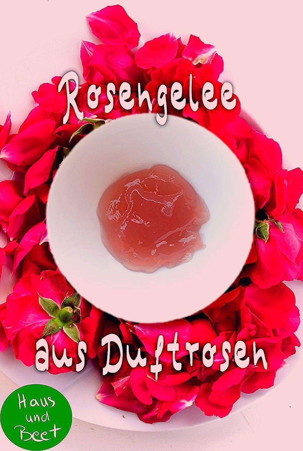 Rosengelee – Eine zarte Versuchung aus dem Garten - Haus und Beet