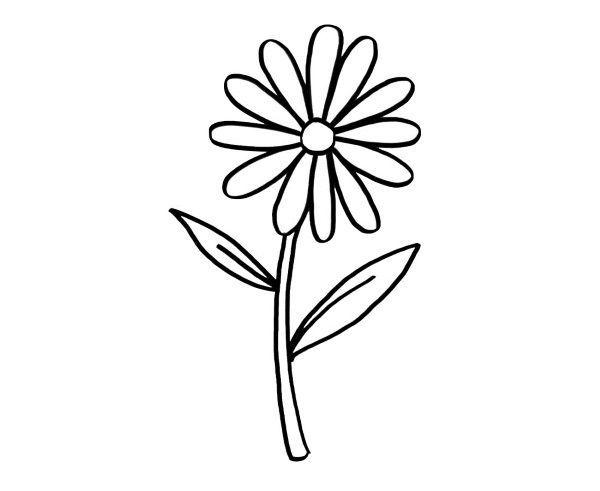 Margarita Dibujo Para Colorear E Imprimir Jpg 600 491 Margaritas Dibujo Colorear Gratis Flores Para Imprimir