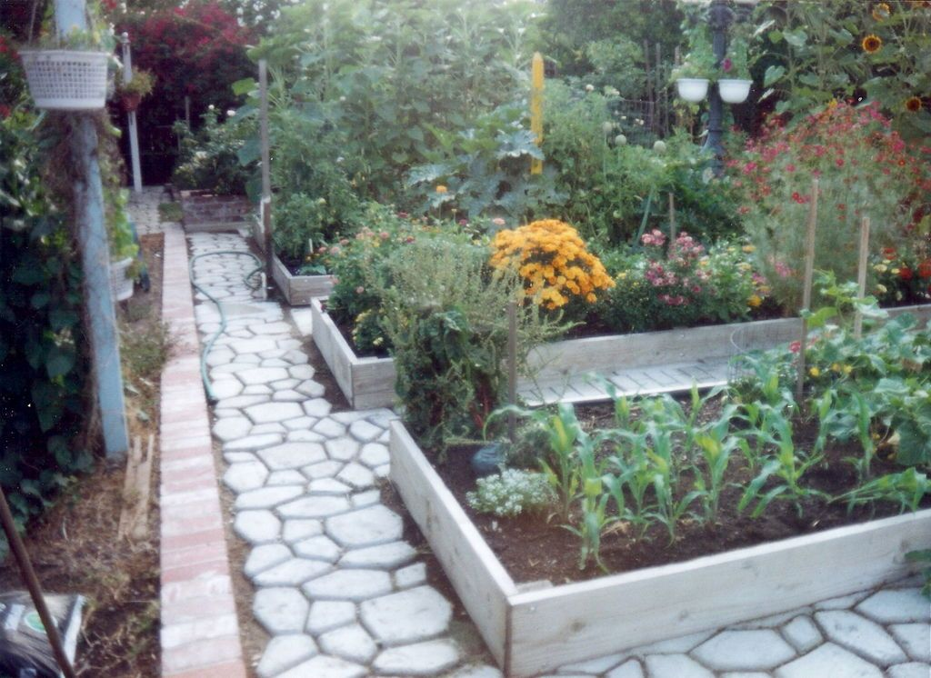 An improved raised bed garden pea gravel walkways and for Cement garden paths