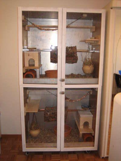 Nufer\u0027s Chinchilla-Hobbyzucht - Käfig - so sind unsere aufgebaut