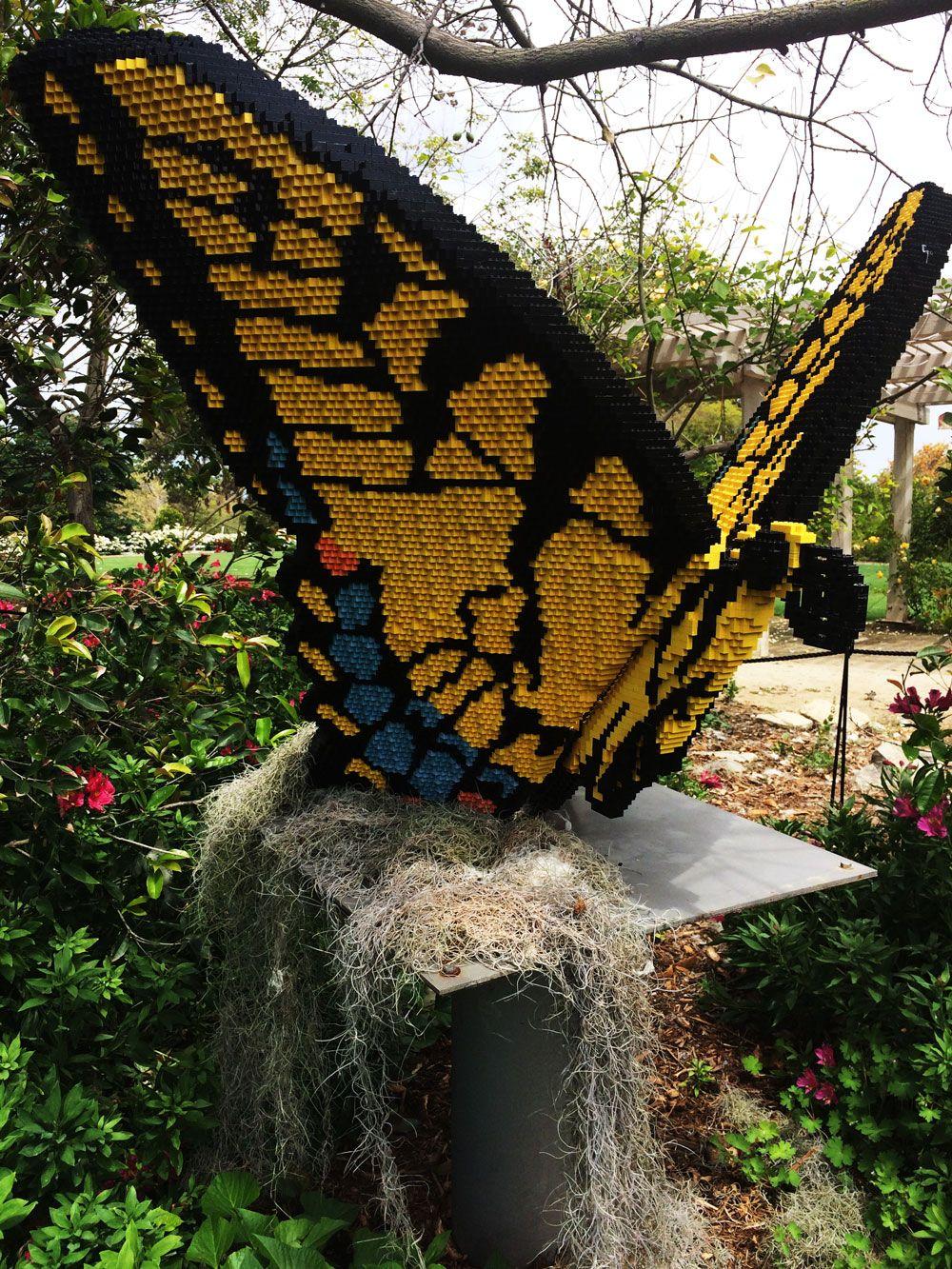 South Coast Botanic Gardens Nature Connects Exhibition
