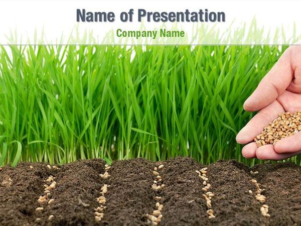 Planting seeds powerpoint template backgrounds planting seeds planting seeds powerpoint template backgrounds toneelgroepblik Image collections