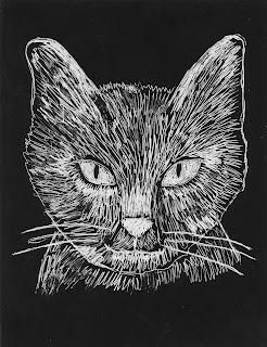Scratch Art Cat Face That Is Awesome