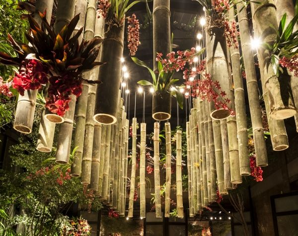 #wedding #decor #bamboo | Events & party ideas in 2019 ...
