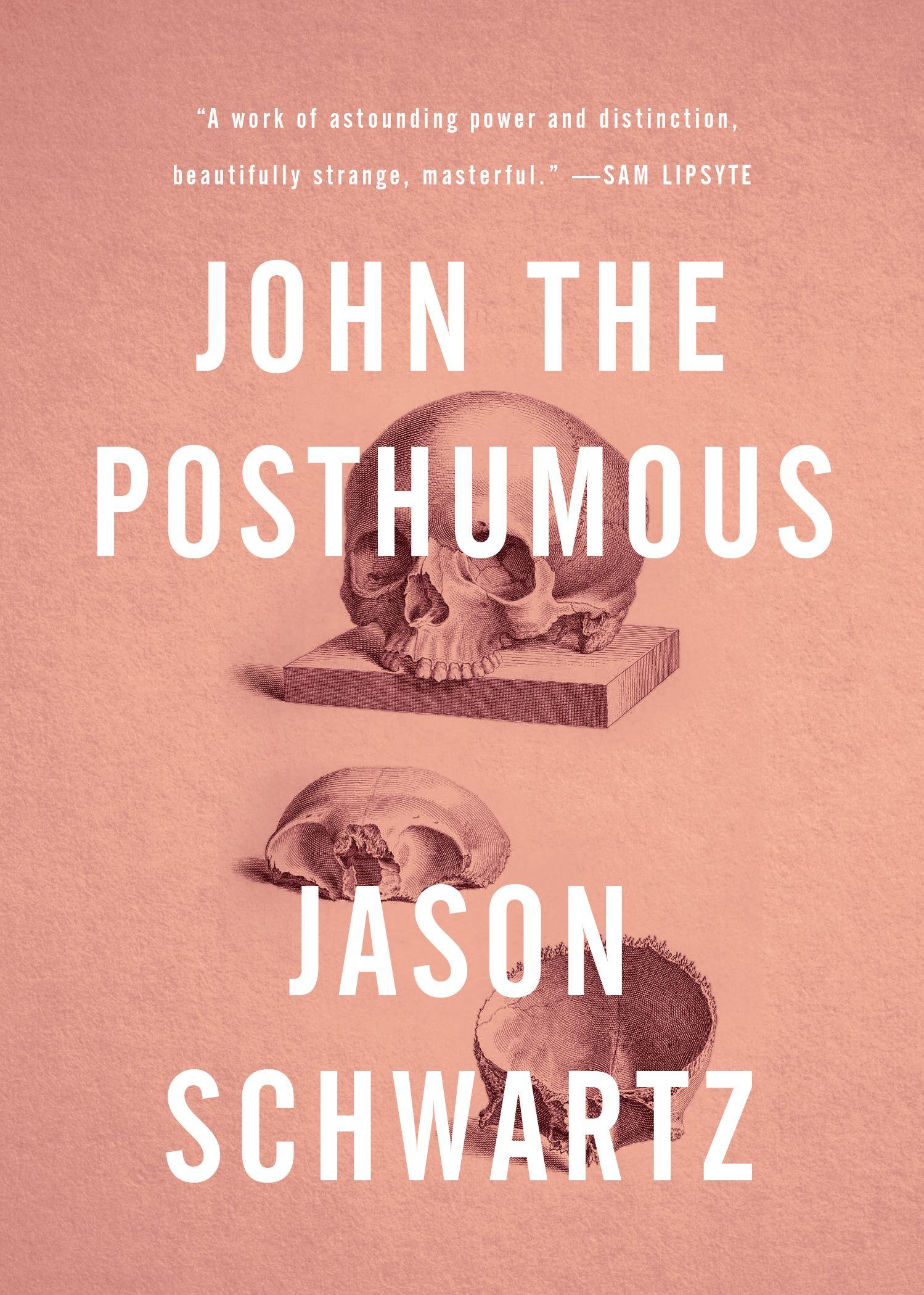 John the Posthumous: A Fiction | Literature | Books, Book, magazine