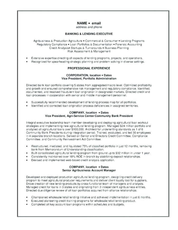 Personal Banker Sample Resume Resume For Personal Banker Banking