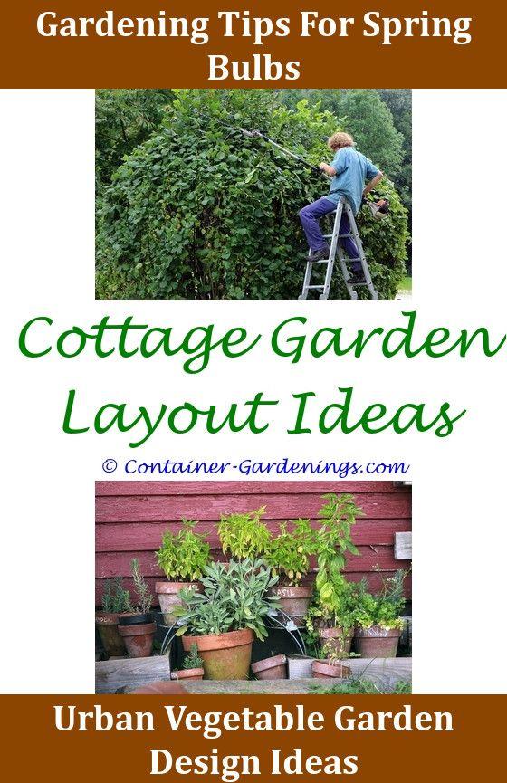 Formal Cottage Garden Ideas,garden plant leaf tips brown.Gargen Gift ...