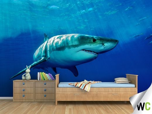 this great white shark wall mural looks so realistic Not real just