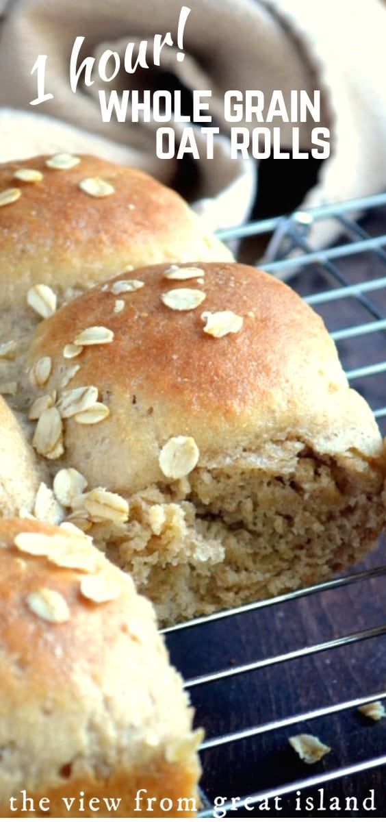 Quick Whole Grain Oat Rolls ~ these delicious yeasted ...
