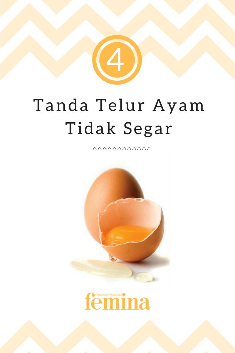 4 Tanda Telur Ayam Tidak Segar Telur Manfaat Telur Resep