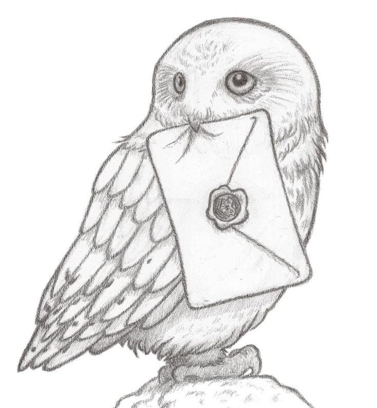 68 Media Tumblr C Zeichnungen Zeichnung Eule Zeichnung