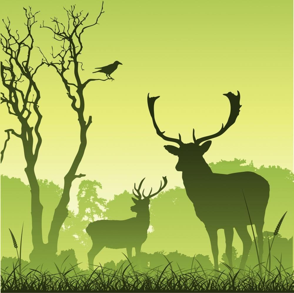 Wallmonkeys Male Stag Deer on a Meadow with Trees and Bird Peel and ...
