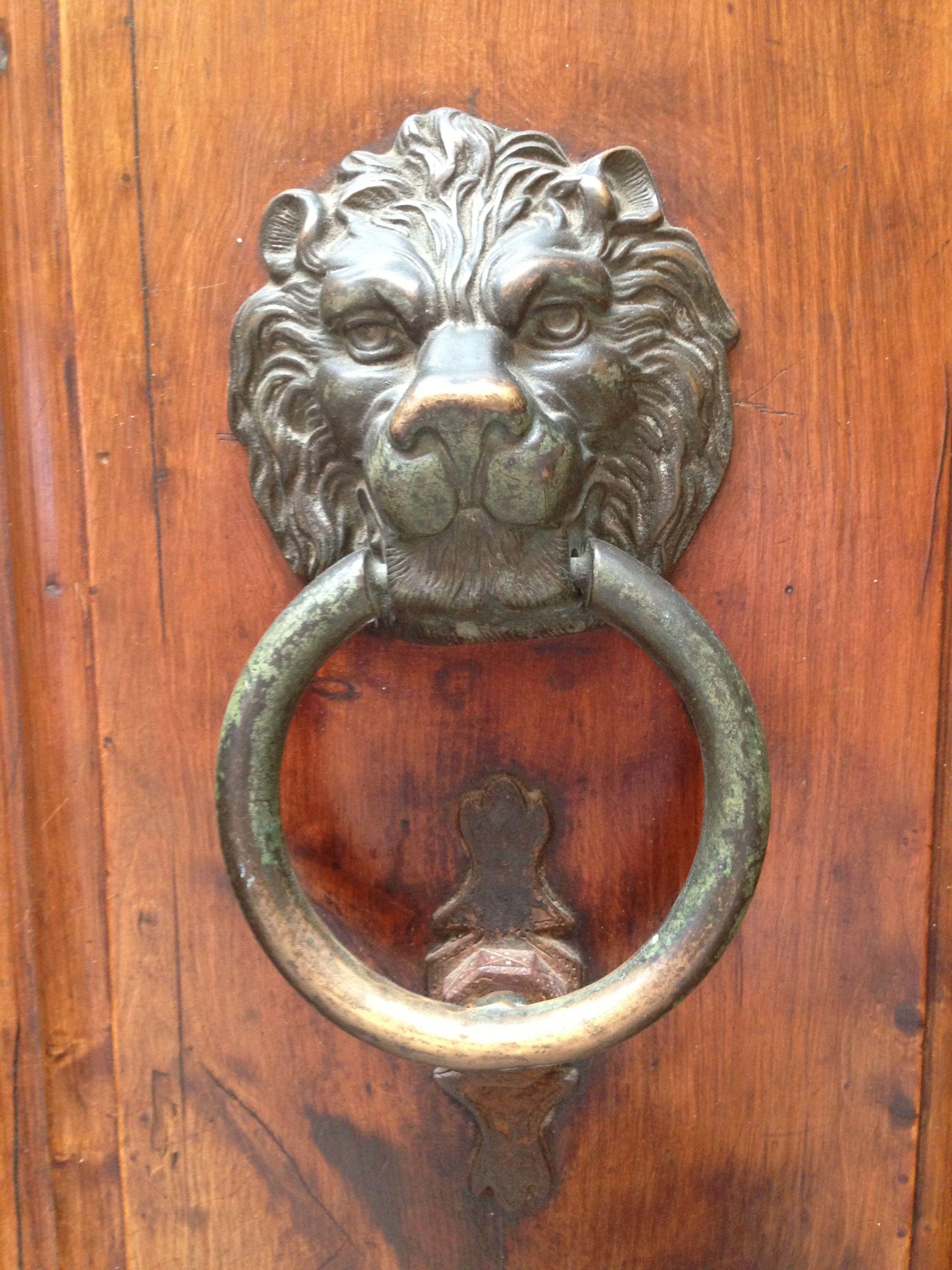 Lucca door handle