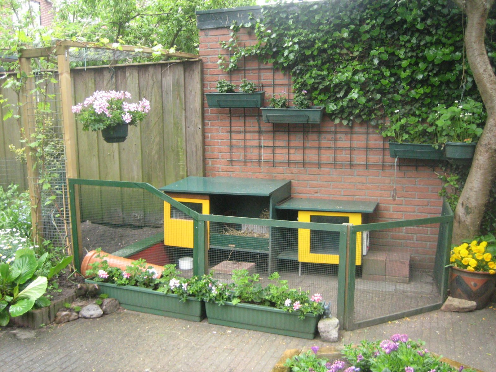 an awesome rabbit hutch for the backyard pet room