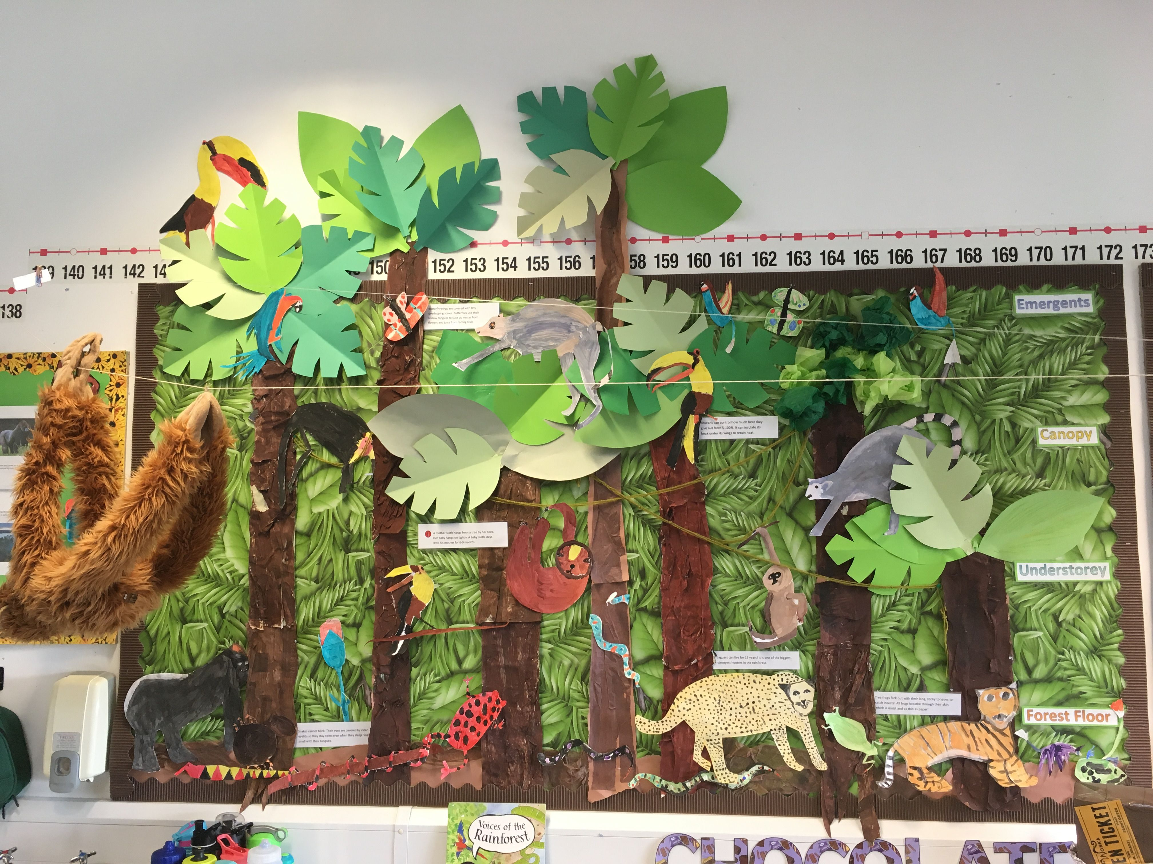 Rainforest Jungle Display Ks2 Art Jungle Fever