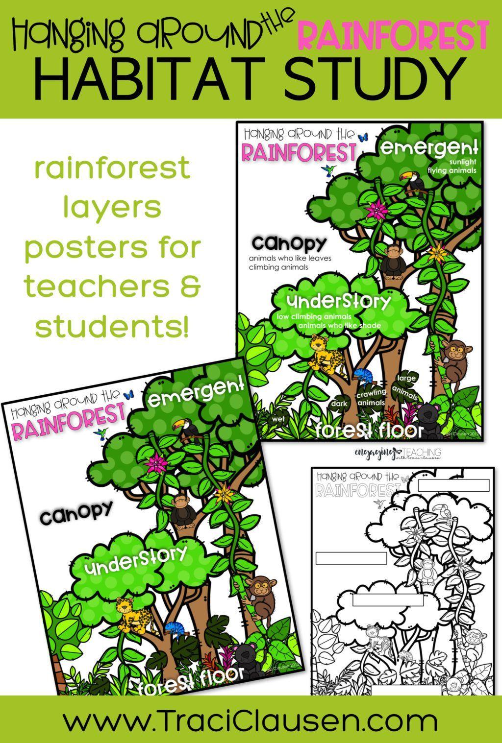 Plant And Animal Habitats