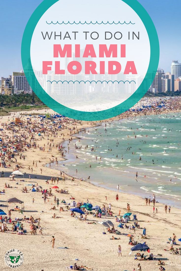 Planning A Trip To Miami Florida Check Out What Do In Including