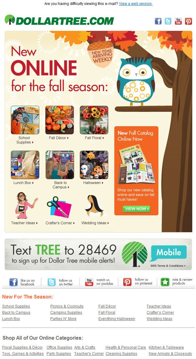 Dollar Tree Newsletter  The Best EMail Designs