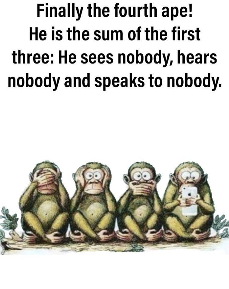 4th Monkey Monkeys Funny Clean Humor Funny Memes