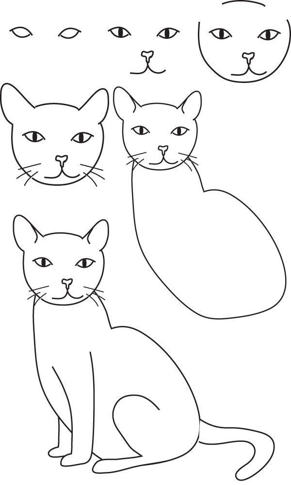 Learn How To Draw A Cat With Simple Step By Step Instructions Katze Zeichnen Tiere Malen Malen Und Zeichnen