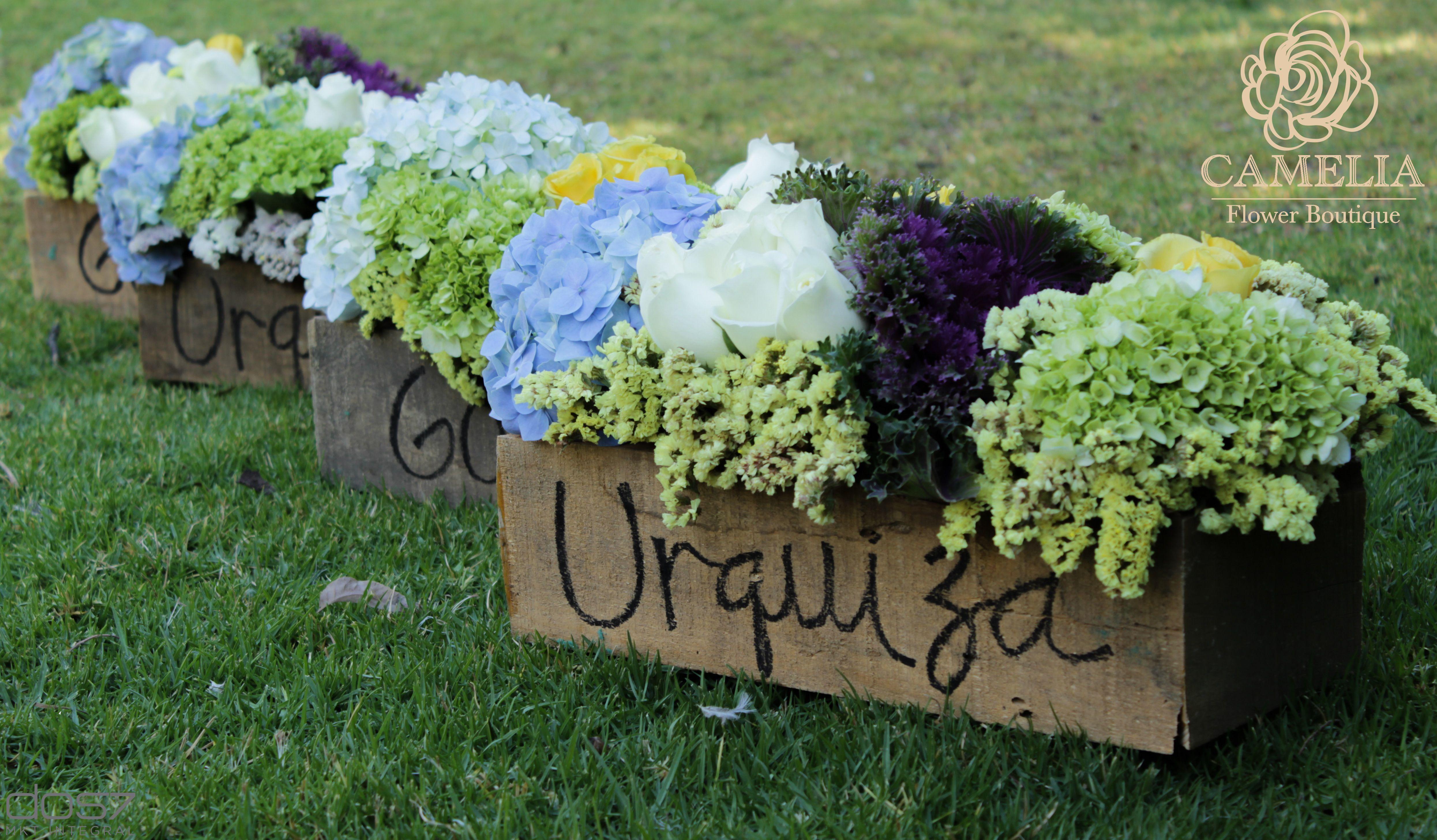 Arreglo De Flores Creaciones Unicas Camelia Flores Flowers Flower Boutique Plants