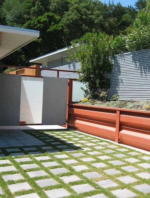 Backyard, Backyard Dog Area, Home, Garden