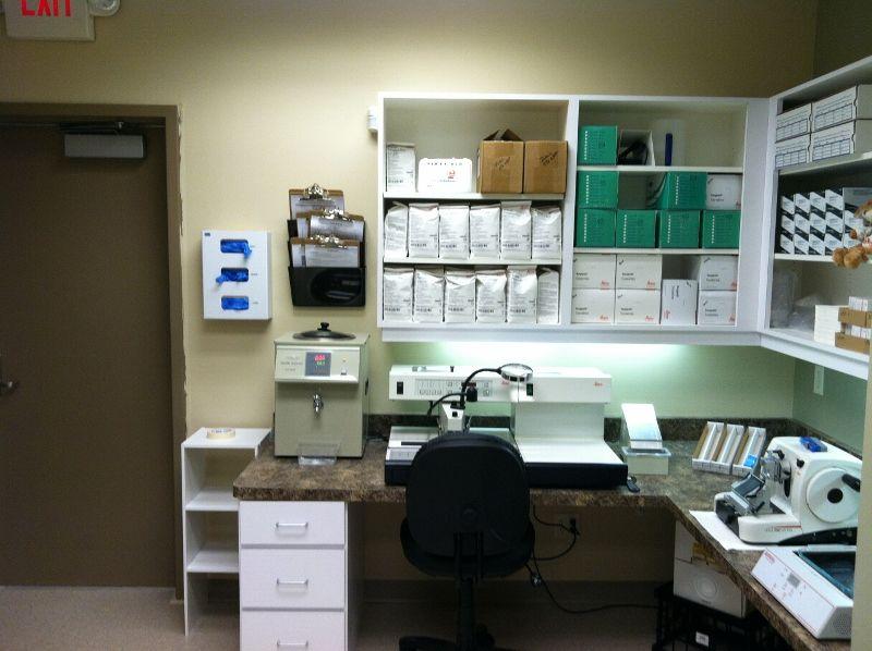 how to set up a pathology lab