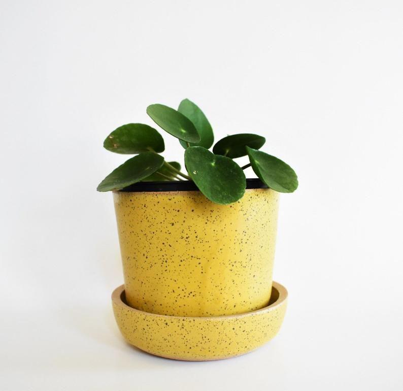 Mustard Yellow Planter Set Modern Ceramic Planter And Base In 2020 Yellow Planter Ceramic Planters Planters