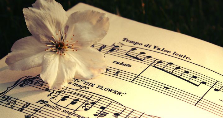 The 16 Most Beautiful Classical Music Pieces Inspired By Flowers Music Pictures Music Wallpaper Classical Music
