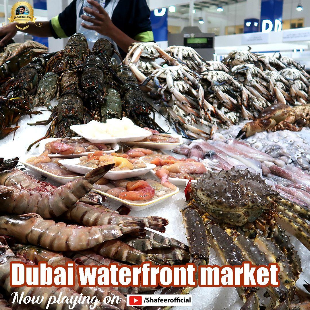 Pin On Dubai Travel