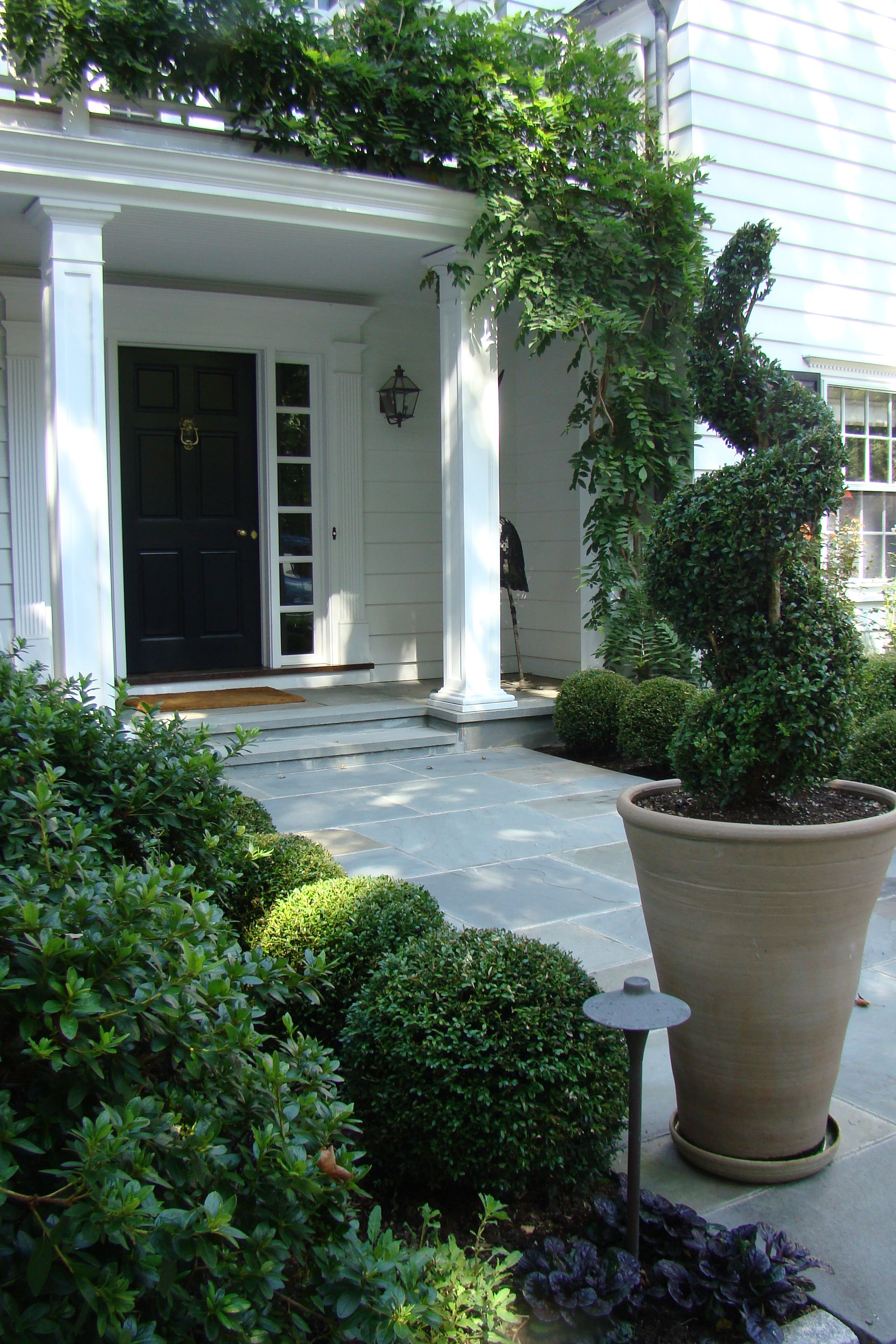 We Created This Wide Front Entry Walk Flanked By Boxwood And More